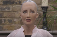 Should Robots look like humans
